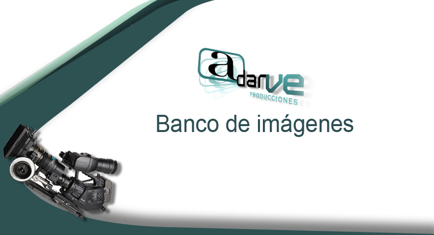 Bank of images, collection, videos, valencia
